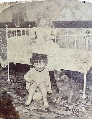 """Antique 1896 Stereoscopic Card ~ """"Innocence"""" Potty & Cat ~ 3-D Stereoview Image"""