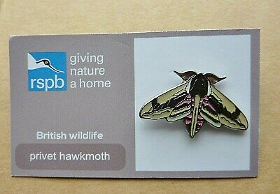 Rspb Pin Badge Privet Hawkmoth  On Giving Nature A Home British Wildlife
