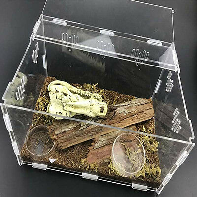 Acrylic Reptile Terrarium Habitat Ideal Case for Larvae Spiders Ants Scorpi G7D7