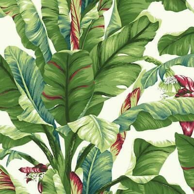 Wallpaper Tropics Banana Palm Leaf Leaves  Green Coral Teal on White