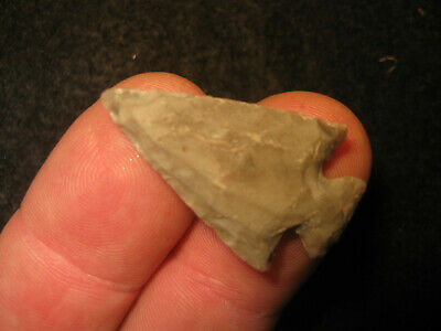 FINE Authentic Texas Scallorn Bird Point Arrowhead, Ancient Indian Artifact #24