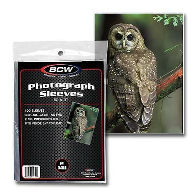 1 Pack of 100 BCW Brand 5 x 7 Photoraph Photo Poly Sleeves
