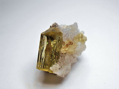 Golden Fluorapatite on Hyalite - Cerro de Mercado Mine - sm miniature