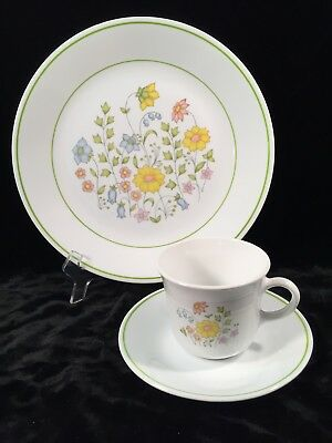 Corelle by Corning MEADOW  Set of 4 Dinner Plates / 4 Cups & Saucers