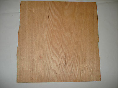 ONE  RED OAK Veneer Sheet 13'' x 24'' 1/20  OR .050 inch  40 years old  NOS