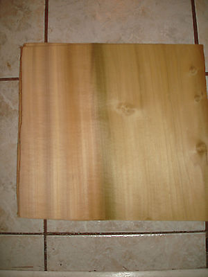 One Piece Poplar Wood Veneer   14 '' X 12''   1/20Th  Or  .05  Qaurter Sawn