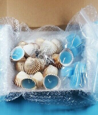 Shell Candle Making  Kit. Deluxe Model.