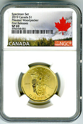 2019 Canada $1 Ngc Sp69 First Releases Pileated Woodpecker Loonie Rare Loon !