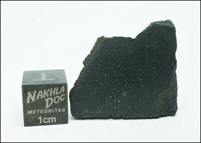New Aguas Zarcas CM2 Meteorite - Smell the Hydrocarbons - 8.4 Grams