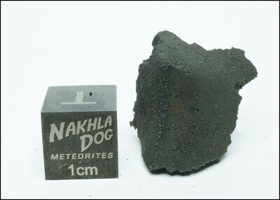 New Aguas Zarcas CM2 Meteorite - Smell the Hydrocarbons - 3.8 Grams