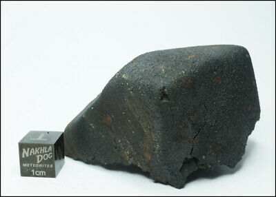 New Aguas Zarcas CM2 Meteorite - Smell the Hydrocarbons - 81.6 Grams