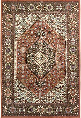 X Large TRADITIONAL RUG ORIENTAL AREA RUGS Floral Medallion Floor Carpets Mats