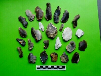 Group of Flint Tools; Mesolithic/Neolithic;recent finds from Dorset -Look!