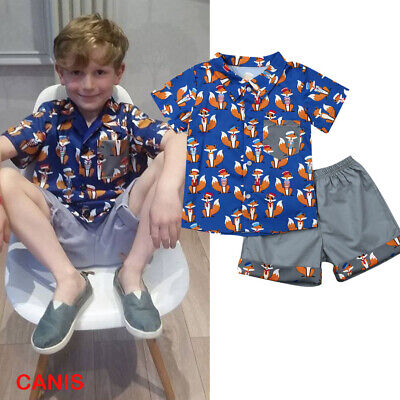 Toddler Kids Baby Boy Clothes Boys Outfits Sets T-Shirt +Short Pants Fox Tops