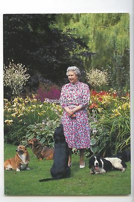 er0249 - The Queen with Four of her Dogs in the Sandringham Garden - postcard
