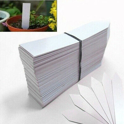 100 Large Plant Garden Markers Labels Seeds Name Plants Tags White Plastic