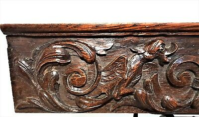 Gothic scroll leaves griffin drawer Antique french oak wooden salvaged furniture