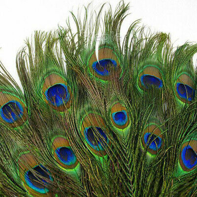 1-100pcs Real Natural Peacock Tail Eyes Feather 23-30cm For Xmas Home Decors
