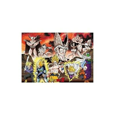 "Poster ""DBZ/ Group Cell Arc"" (91.5x61)"