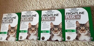 FRONTLINE Plus for Cats, 6 Pack