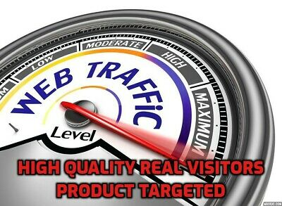 1,000 Geo Targeted Web Traffic Visits For Your Website (Product Targeted)