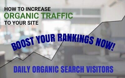300+ Organic Daily Web Traffic For Your Website For 30 Days (Real Visits)