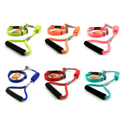 ZooLand Design-Nature Color Rope Leash & Collar Set for Dogs Outdoor Walking