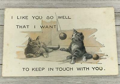 Vintage Kittens I Like You So Well That I Want To Keep In Touch Postcard