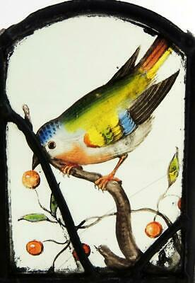 BIRD WITH CHERRIES STAINED GLASS PANEL 17th CENTURY