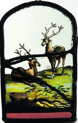 TWO STAGS STAINED GLASS PANEL 17th CENTURY