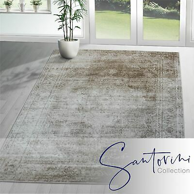 Traditional Floral Medallion Rugs Ivory Oriental Flowers Living Room Carpets Mat