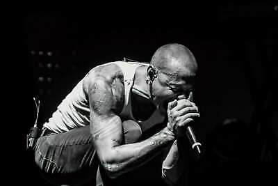 Chester Bennington Linkin Park Singer Art Hot 24x36in FABRIC Poster N3697