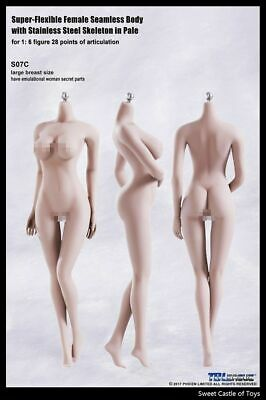 1/6 TBLeague Female Seamless Body Pale Large Bust S07C w/Steel Skeleton Phicen