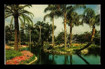 Dr Jim Stamps Us Busch Gardens Water View Tampa Florida Postcard