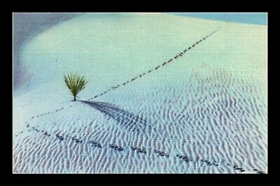 Dr Jim Stamps Us White Sands National Monument New Mexico Linen Postcard