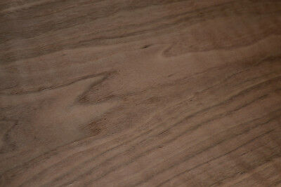 Walnut wood Raw Veneer Sheets 10 x 28 inches 1/42nd thick               R4736-49