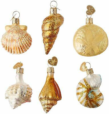 Assorted Sea Shells Old World Christmas Blown Glass Ornaments Set of 6