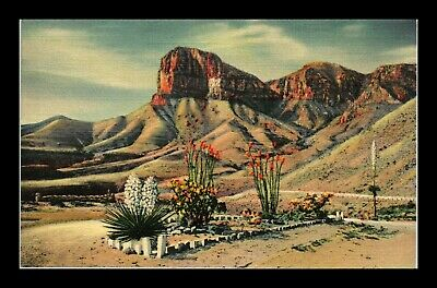 Dr Jim Stamps Us Signal Peak Guadalupe Mountains New Mexico Linen Postcard