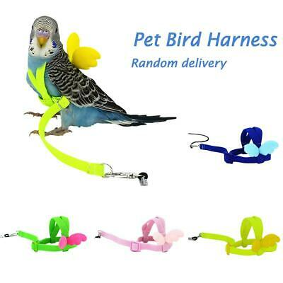 Pet Parrot Bird Harness Leash Flying Rope Straps Outdoor Training Traction R