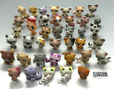 Lps Littelest Pet Shop Chat Cat 40 Ex. Au Choix Choose Petshop Little Pet Shop