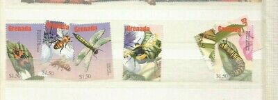 Grenada  Insects Mnh