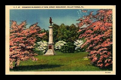 Dr Jim Stamps Us Dogwood Blossoms New Jersey Monument Valley Forge Postcard