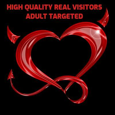 500 Daily Website Visitors For 1 Month (High Quality - Adult Targeted)