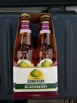 Somersby Blackberry Cider 120 Flaschen, 4,5% vol 5 x 24 x 0,33l  Flaschen