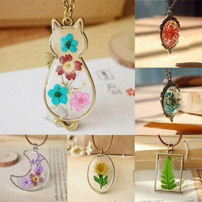 Natural Dried Flower Butterfly Moon Bottle Glass Pendant Necklace Sweater Chain