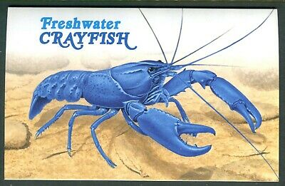 2019 Freshwater Crayfish - Post Office Pack