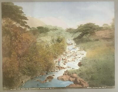 1880's Hand Colored Albumen Photo By Davey Of The Road To Moanalua Hawaii