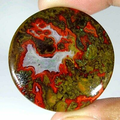 47.30Cts Natural Morocco Seam Agate Round Cabochon Loose Gemstone