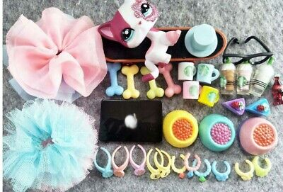 10 Lot Random Littlest Pet Shop LPS Accessories+Short Hair Cat #2291 With Magnet