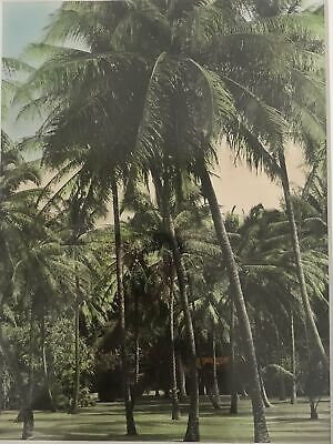 1920's Hand Colored  Silver Print Photograph Of Kauai Hawaii